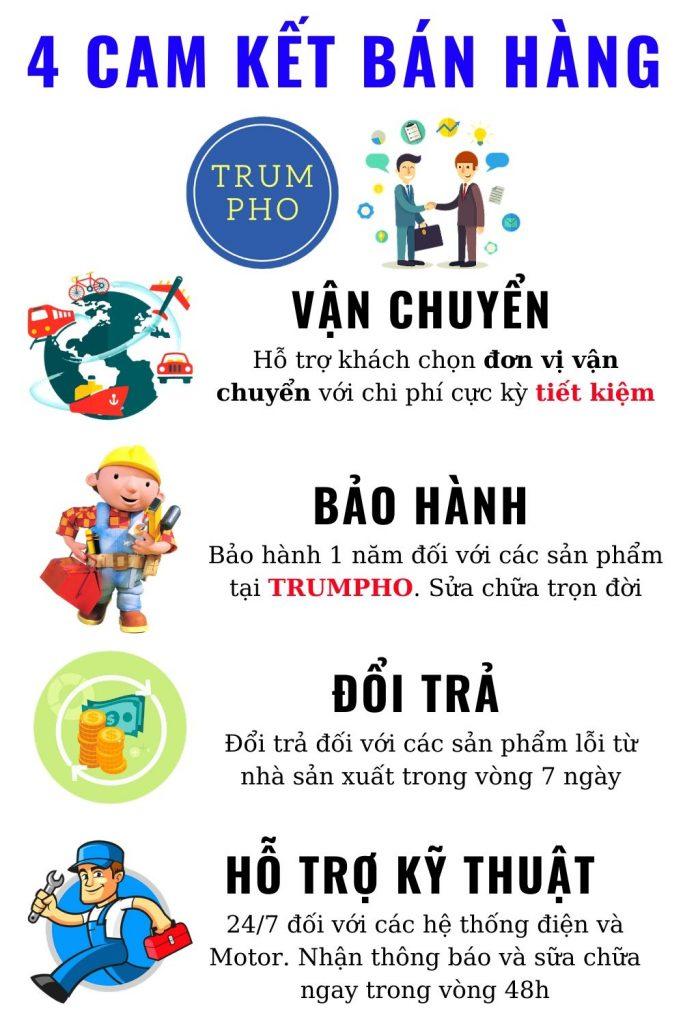 may lam pho mini 2 1