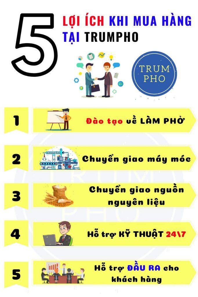 may lam pho mini 4
